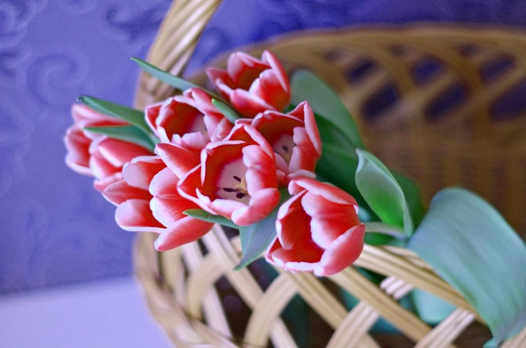 Dekoracja wielkanocna z tulipanów