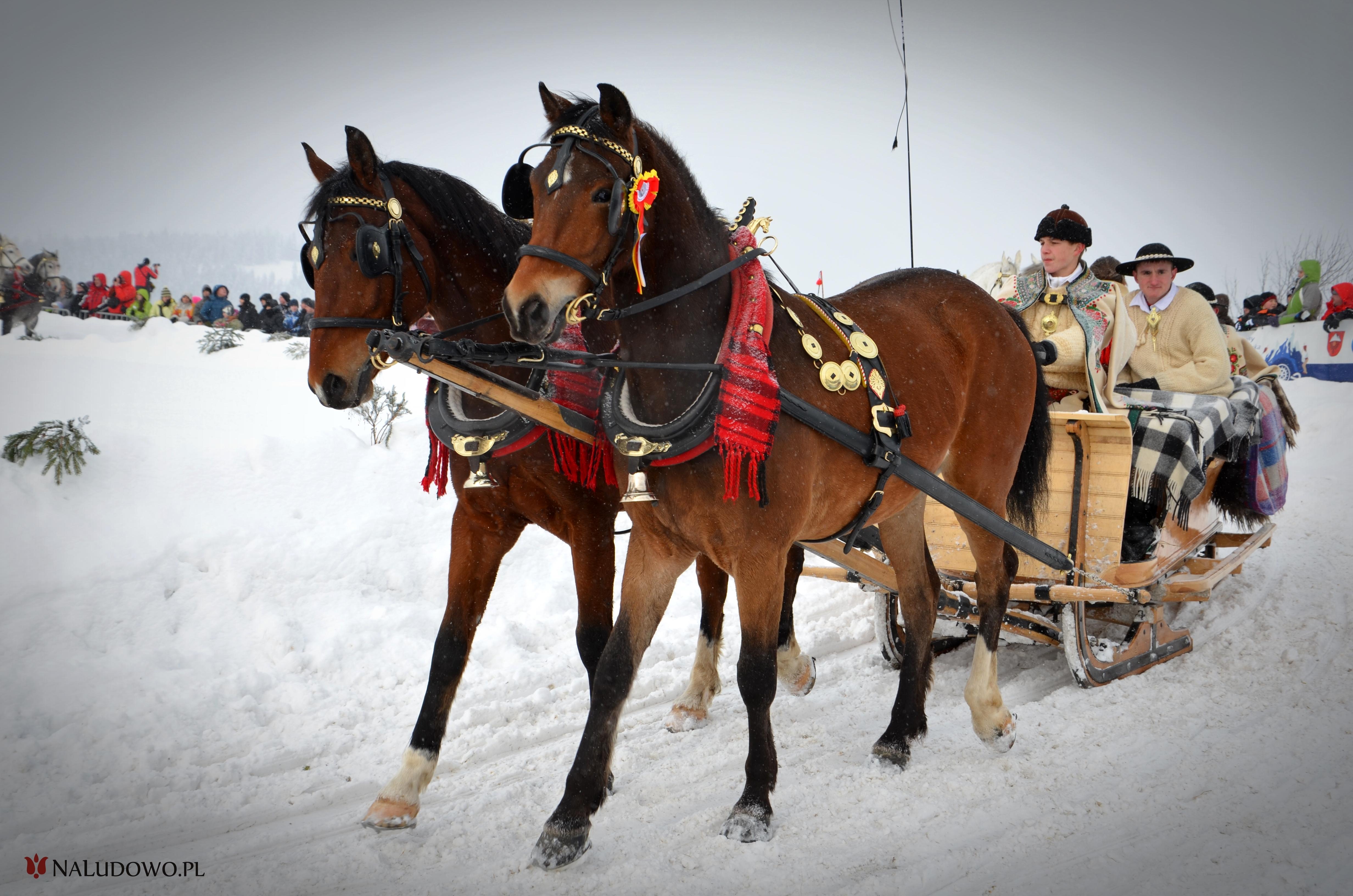 Koń w kulturze góralskiej