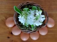 Symbolika jajka w kulturze ludowej