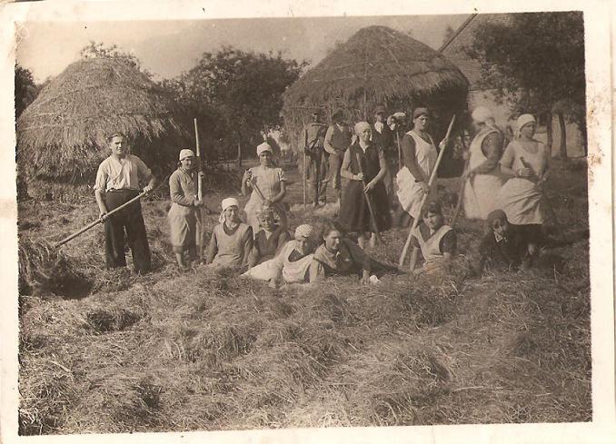 Sianokosy, zdjęcie archiwalne, (źródło: atlaswsi.pl)