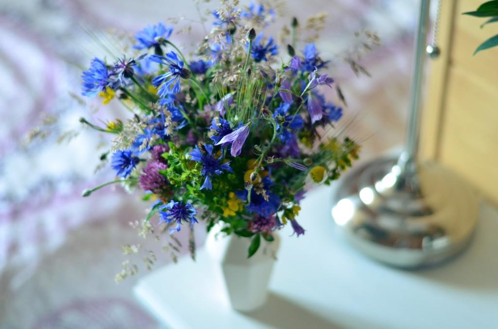 Polne kwiaty do plecenia wianków (fot. M. Armata)